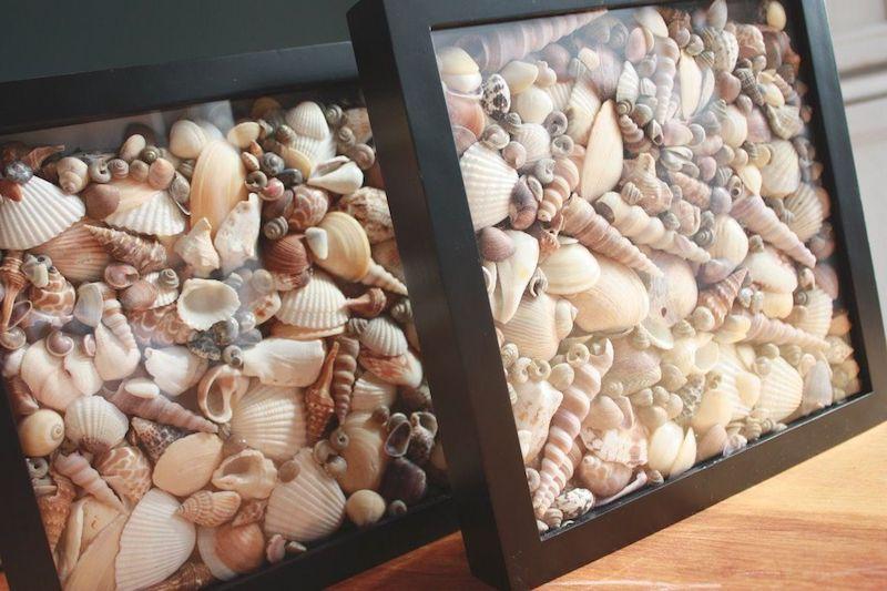 bricolage avec coquillage boîte remplies de coquillages