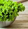 comment conserver la salade salade verte dans un bol