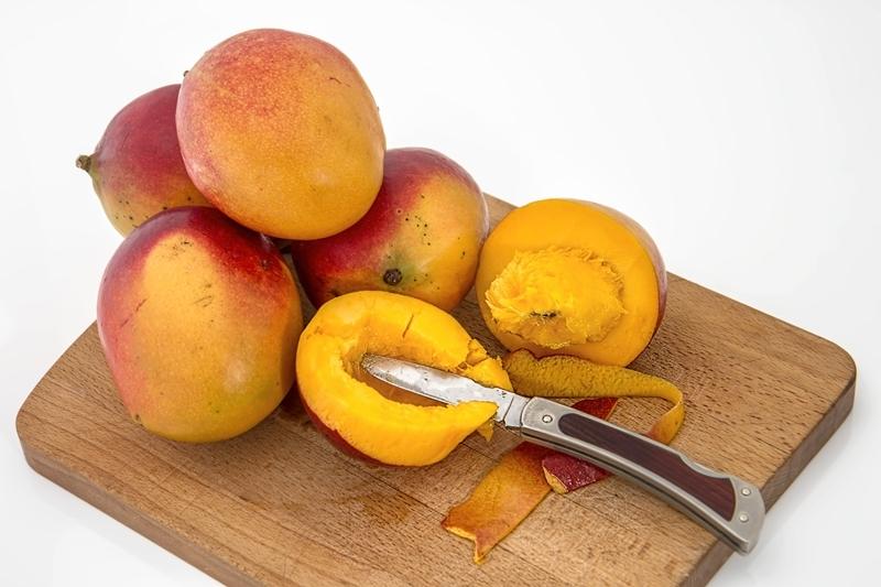 comment couper une mangue technique cultivation manguier maison