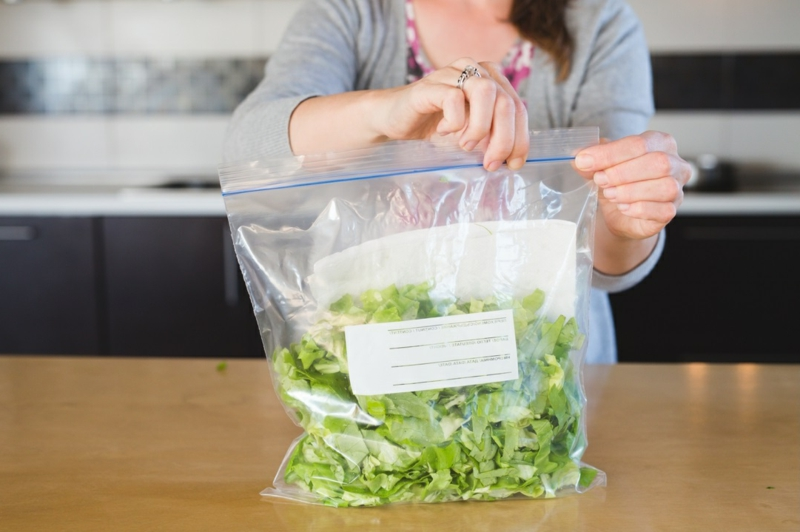 conservation salade verte conserver la salade dans un récipient scellé