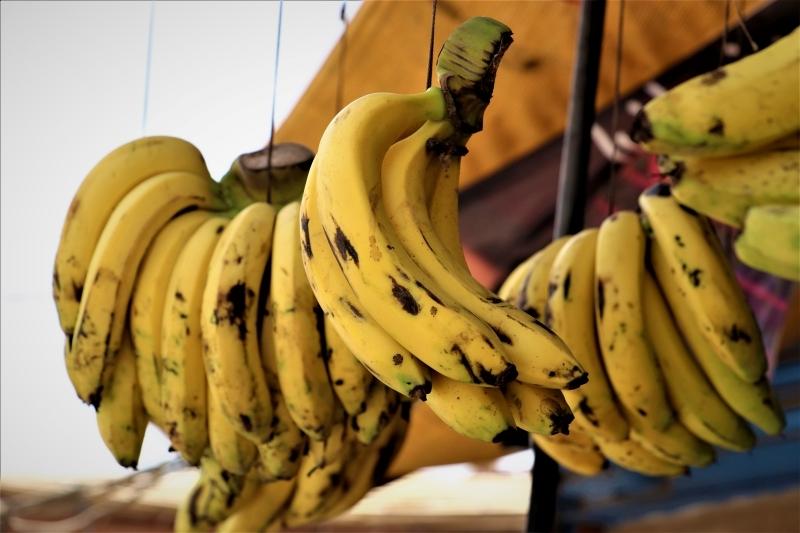 consommation bananes trop mures danger bienfaits santé