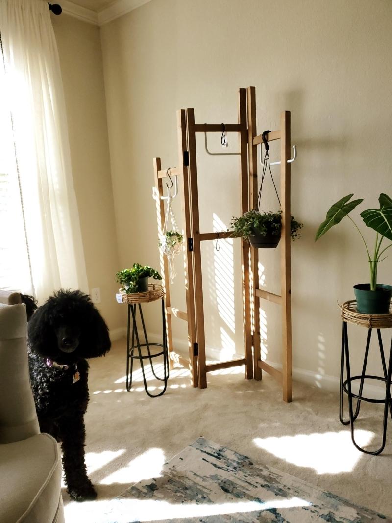 décoration intérieure salon avec suspension pour plante interieur porte manteau bois