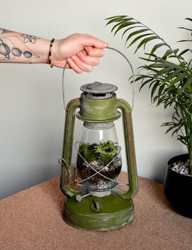diy objet déco plante sous verre lanterne récyclée sol gravier
