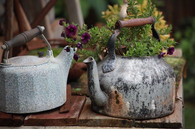 elever tache de rouille astuces de jardin faciles jardiniere diy