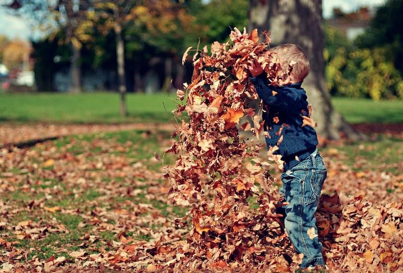 enfant qui joue dans les feuilles d automne