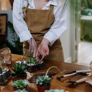 Terrarium aux plantes grasses : tuto fabrication, astuces et conseils d'entretien