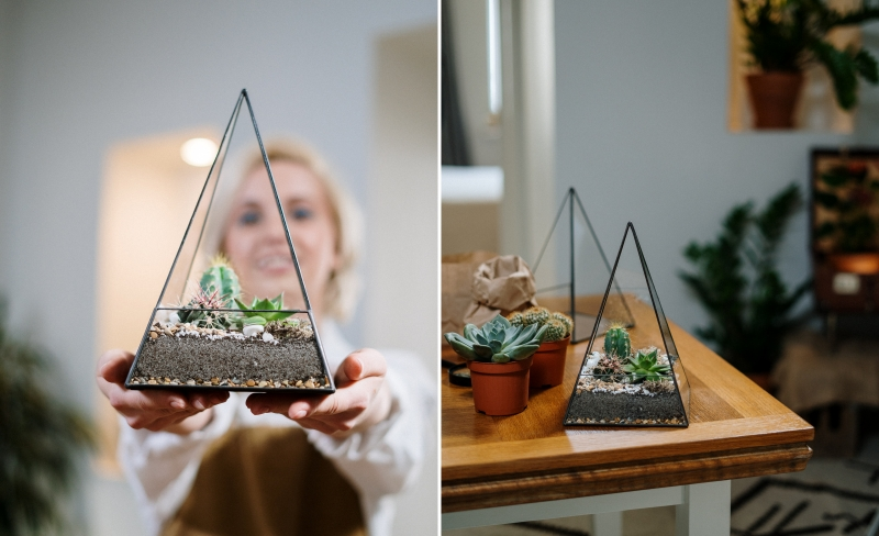 fabriquer un terrarium instruction conseils bricolage jardinage facile
