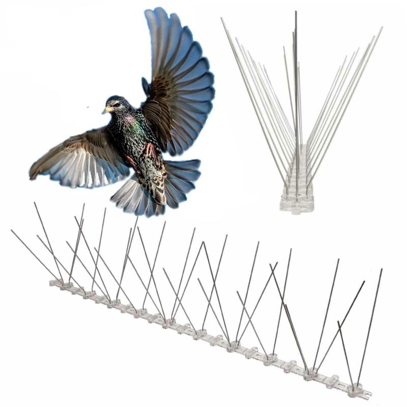 faire fuir les pigeons pointes anti perchage contre les pigeons