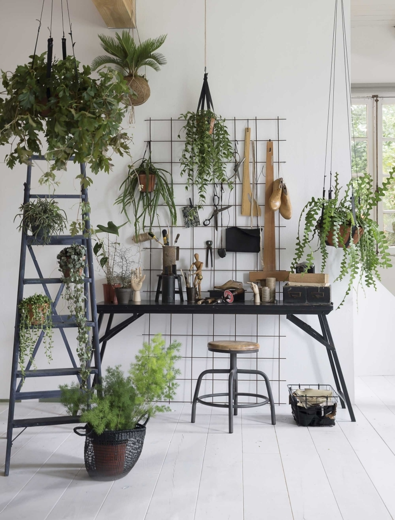 grille métal échelle bois peinture grise plante d intérieur tombante