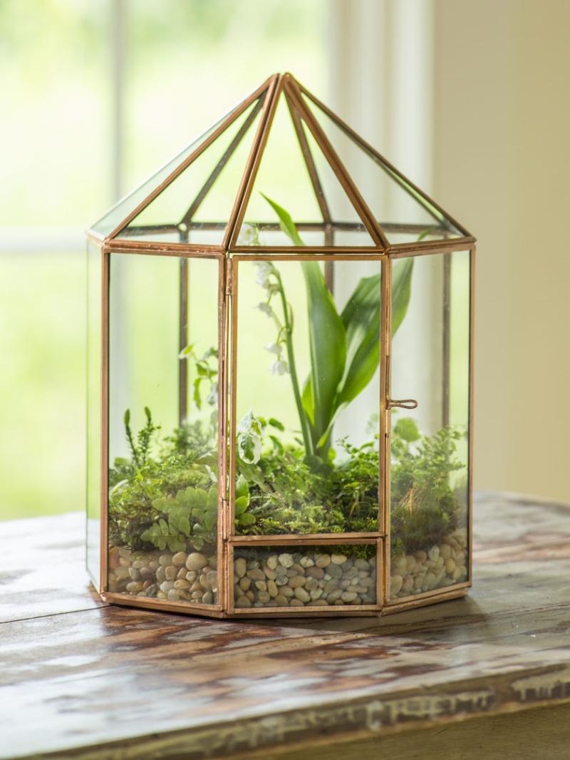 lanterne décorative verre et métal terrarium nature et découverte