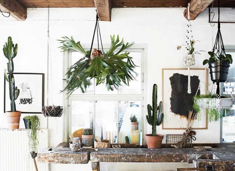 macramé suspension plante poutres bois crochets adhésifs cactus