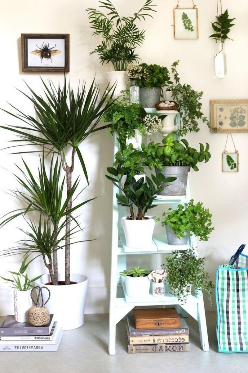 meuble rangement suspendre plantes sans percer échelle bois blanc