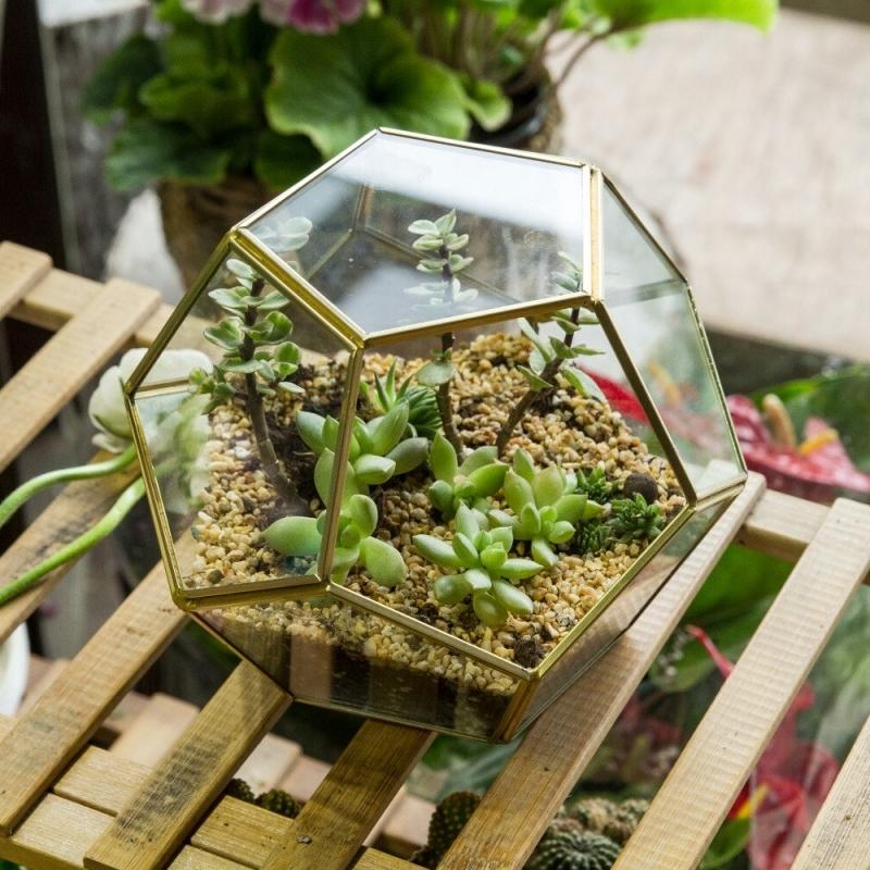 mini plantes feuilles charnues terrarium plante deco récipient métal