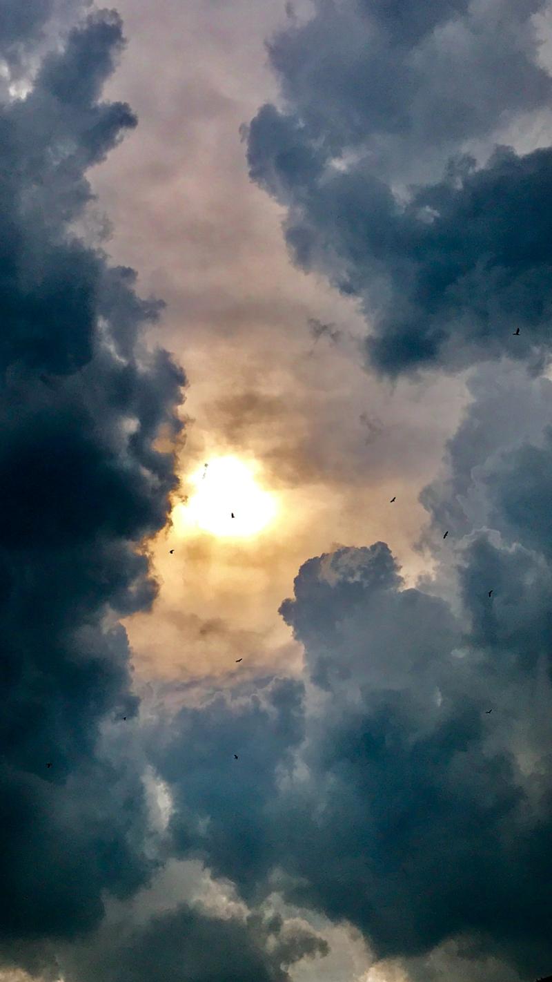 nai art automne le ciel nuageux d automne