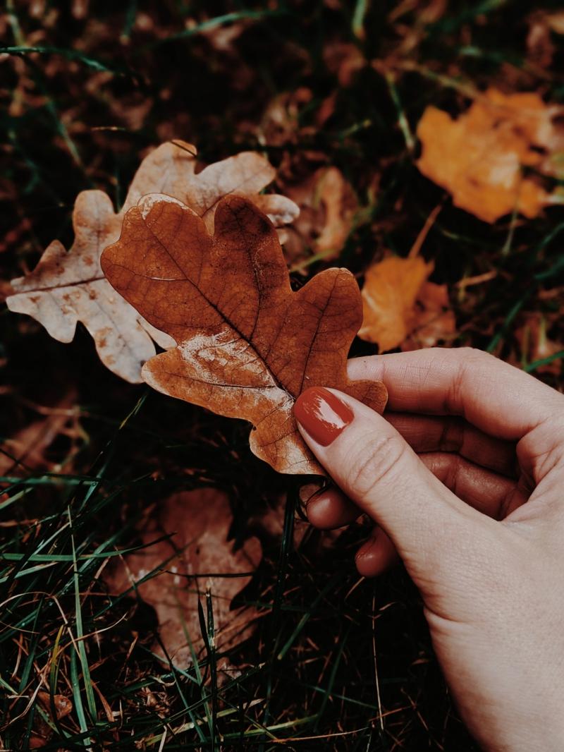 ongles en couleurs d'automne ongles oranges foncés