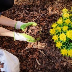 Désherbant naturel efficace - 11 solutions herbicides dans le jardin