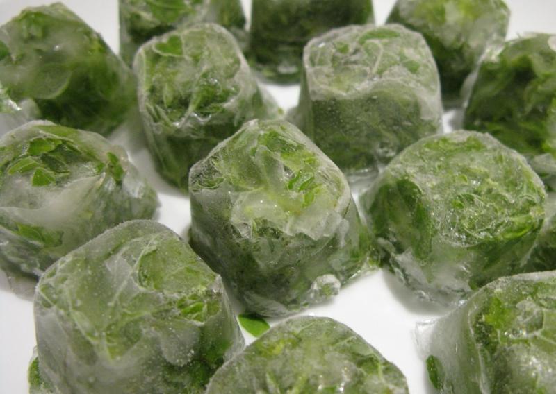 peut on congeler de la salade glaçons verts de salade