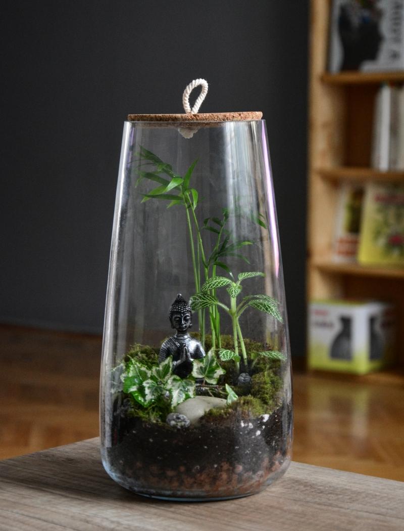 plante dans bocal mini zen jardin mini figurine bouddha plantes vertes