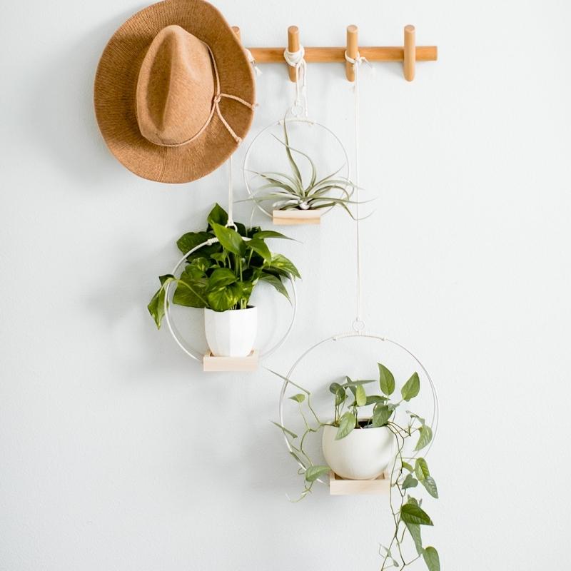 plante suspendue porte manteau chapeau mini terrarium pot fleur