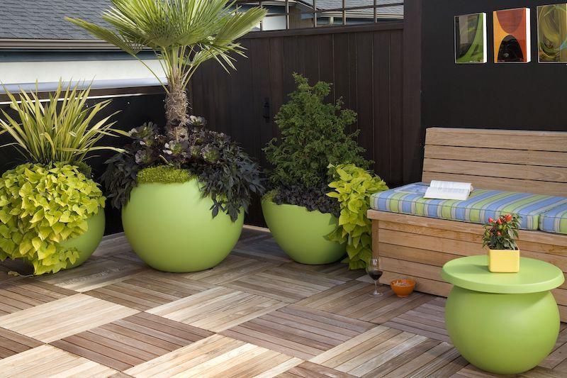 plantes pour terrasse ensoleillée des pots verts et ronds