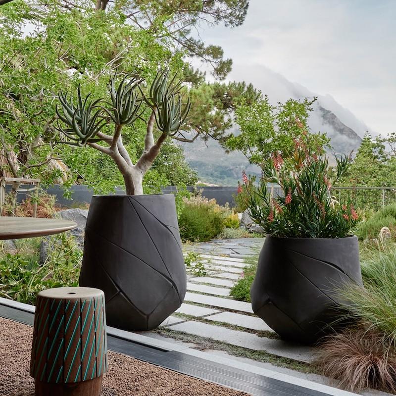 plantes pour terrasse ensoleillée en grands pots