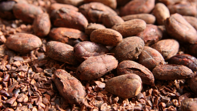 que mettre au sol pour éviter les mauvaises herbes les écorces de fèves de cacao