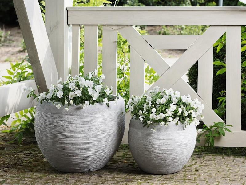 que mettre dans des grands pots sur une terrasse