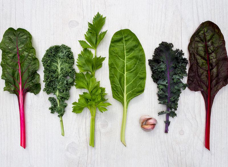 que planter en septembre idée de salades feuilles vertes légumes d automne