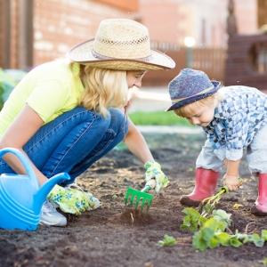 Que planter en septembre ? Liste complète des fruits, des légumes et des fleurs au potager