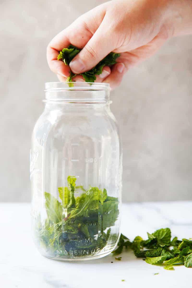 remplir un bocal de feuilles d ebasilic pour faire son sirop de menthe