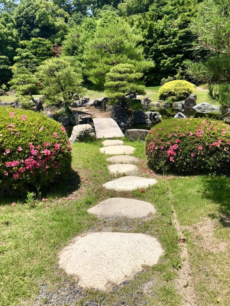ruelle avec grosses pierres pelouse verte et buissons fleuris