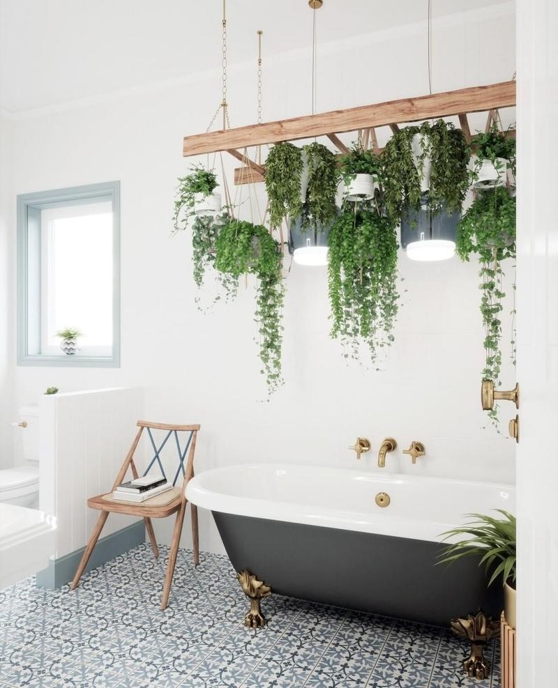salle de bain avec plante grasse retombante interieur rail bois crochets