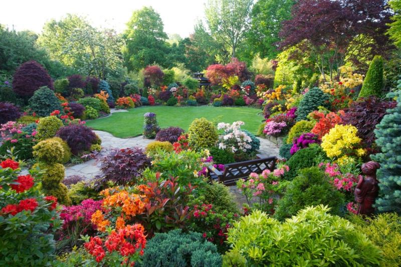 sulfate de magnesium jardin un jardin fleuri en couleurs différentes