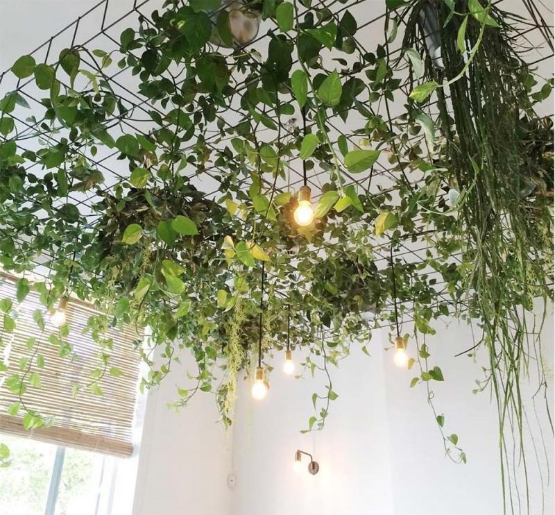 suspension pour plante interieur grille métal plafond suspendu