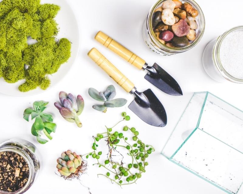 terrarium maison matériaux jardinage contenant verre cailloux