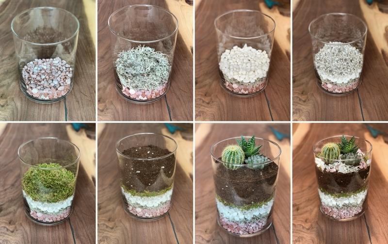 tutoriel fabrication diy terrarium sol mousse plante pour terrarium