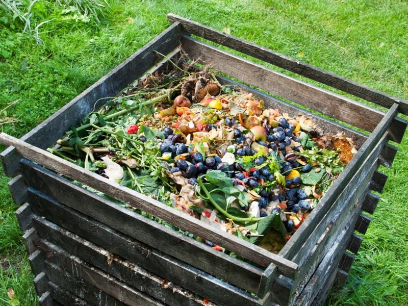 utilisation purin d ortie un compost pour le jardin