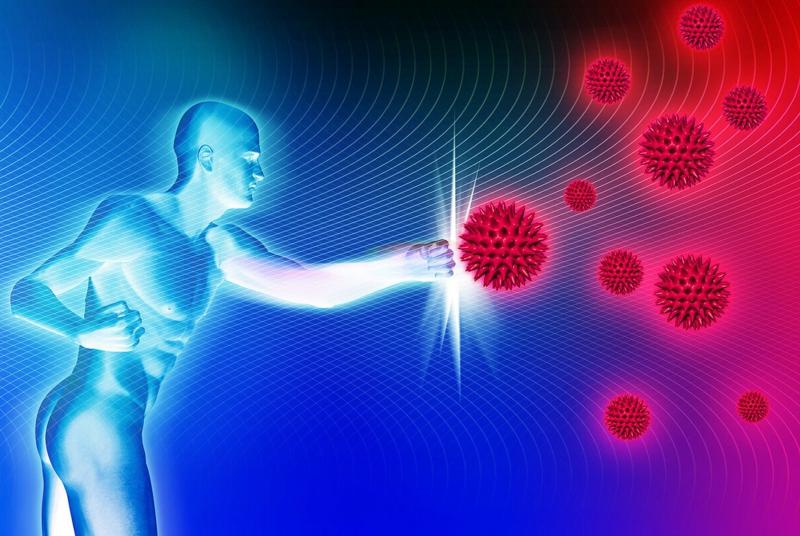 vitesse de marche la défense immunitaire du corps humain
