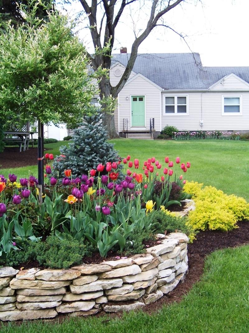 aménagement paysager devant maison bulbe fleur ete gazon