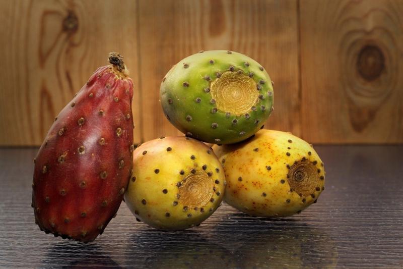 bienfaits de la figue la figue de barberie fruits
