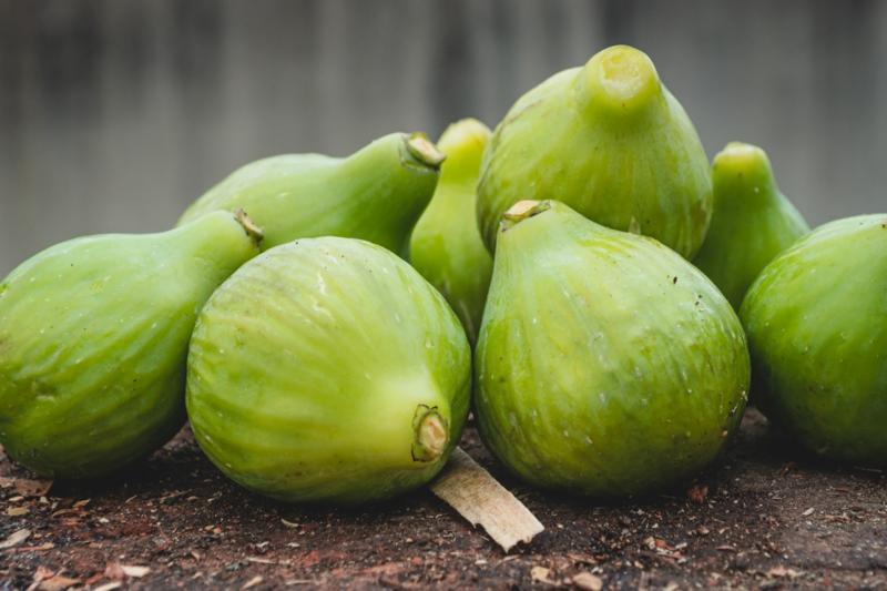 bienfaits de la figue un tas de figues vertes