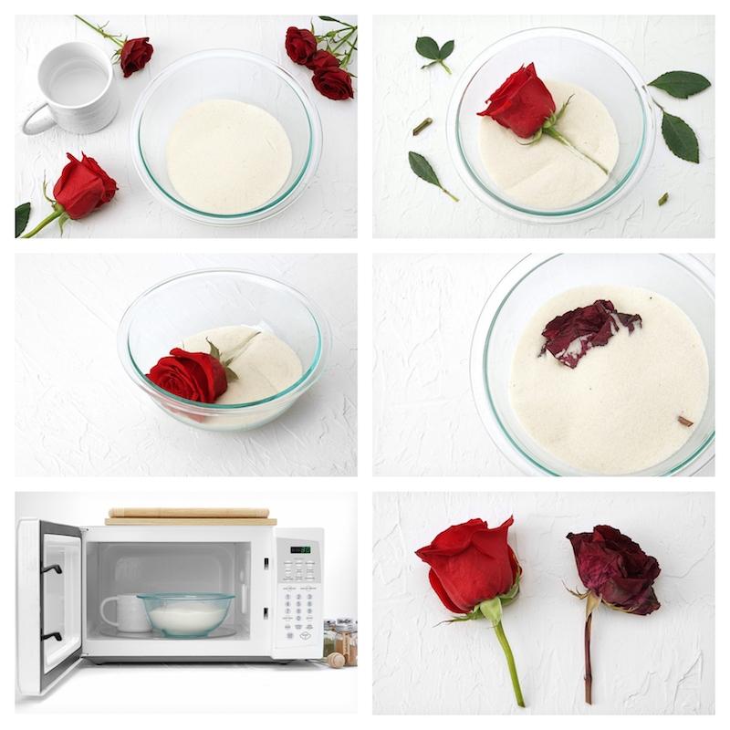 comment conserver une rose faire secher une rose micro ondes