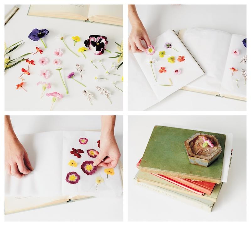 comment faire sécher des fleurs plates dans un livre et objet lourd