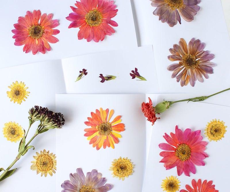 comment faire secher fleurs astuces séchage et méthodes diy