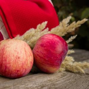 Comment conserver les pommes - des astuces simples et efficaces !