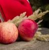 conservation pommes quelques pommes grandes et rouges