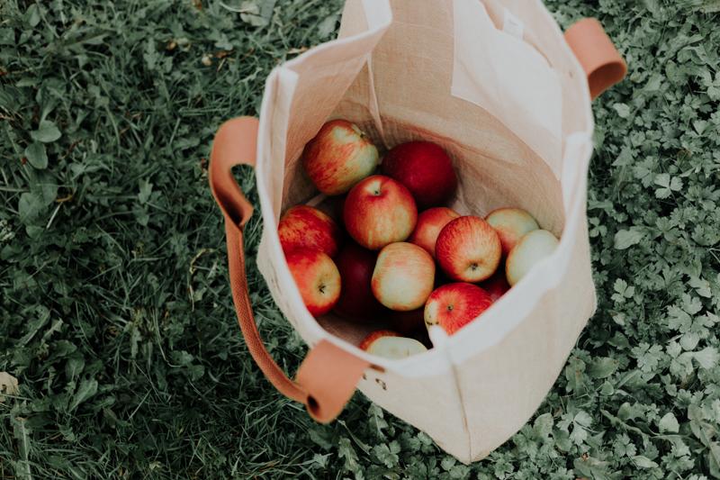 cueillette de pomme des pommes dans un sac de tissu