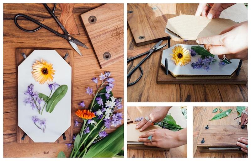 faire de fleurs séchées idée comment presser des fleurs avec presse