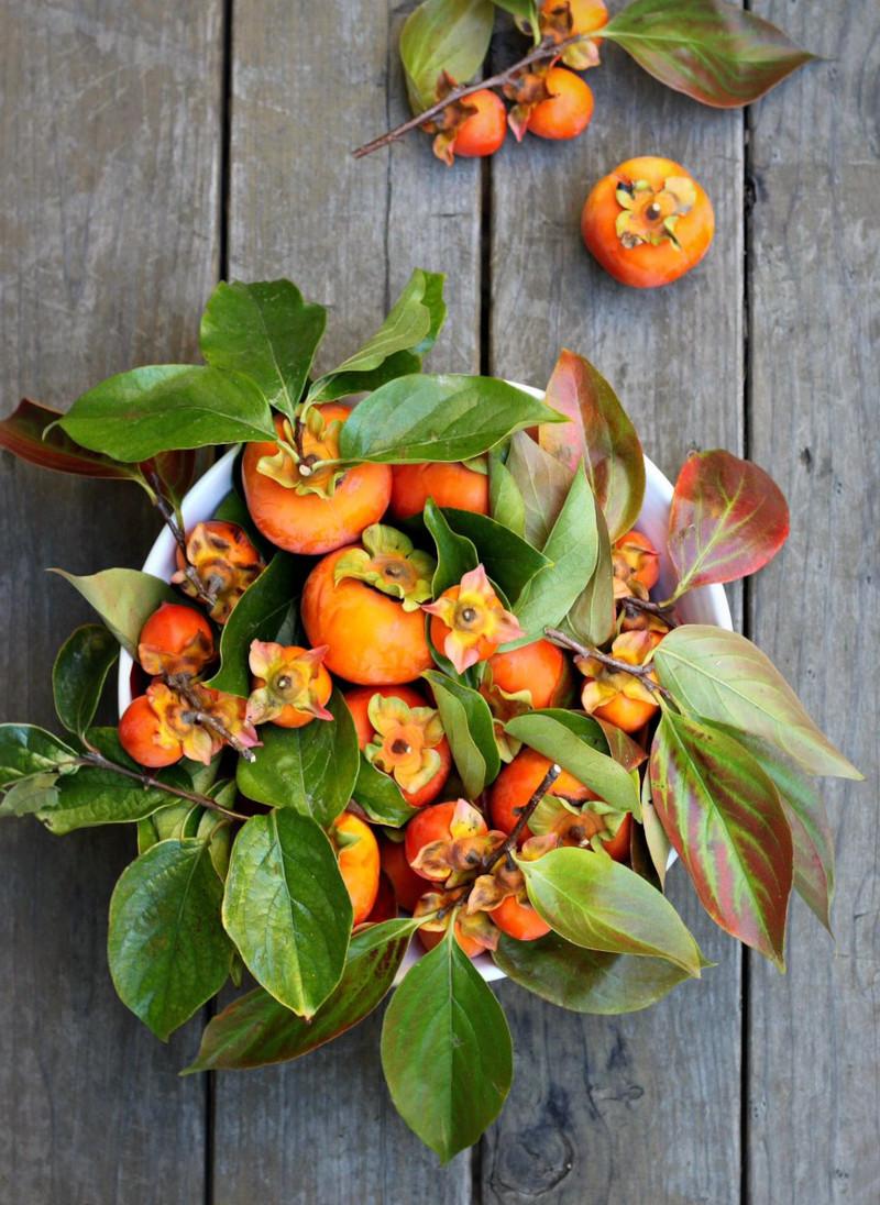 kaki origine les feuilles de kaki sont comestibles faire du thé bénéfique