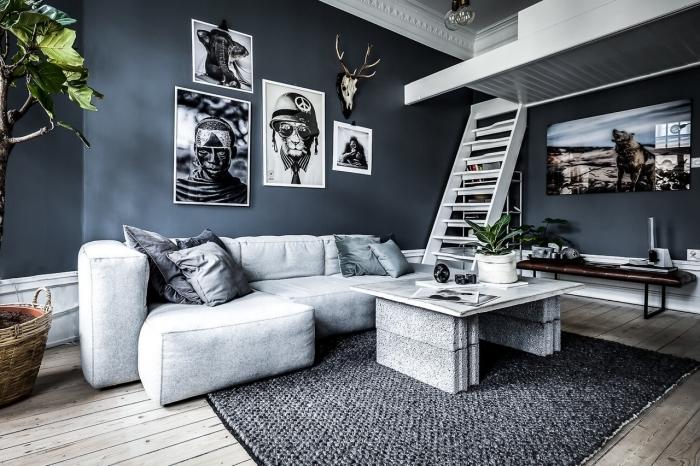 peinture foncée tendance aménagement studio 20m2 salon gris